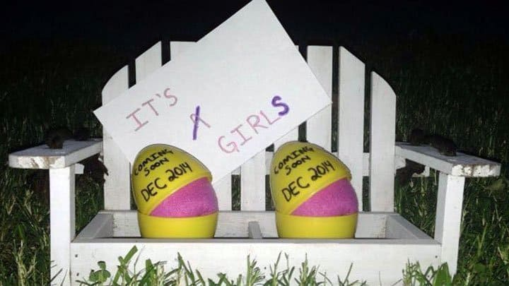 twin gender reveal eggs