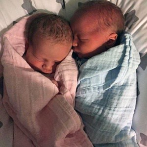 twin pregnancy belly