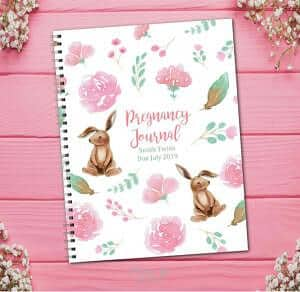 twin pregnancy journal book with rabbits