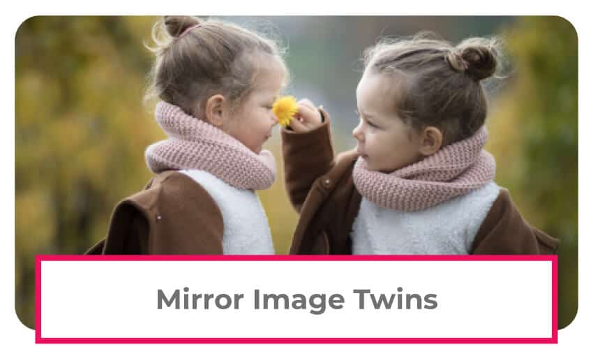 mirror image twins